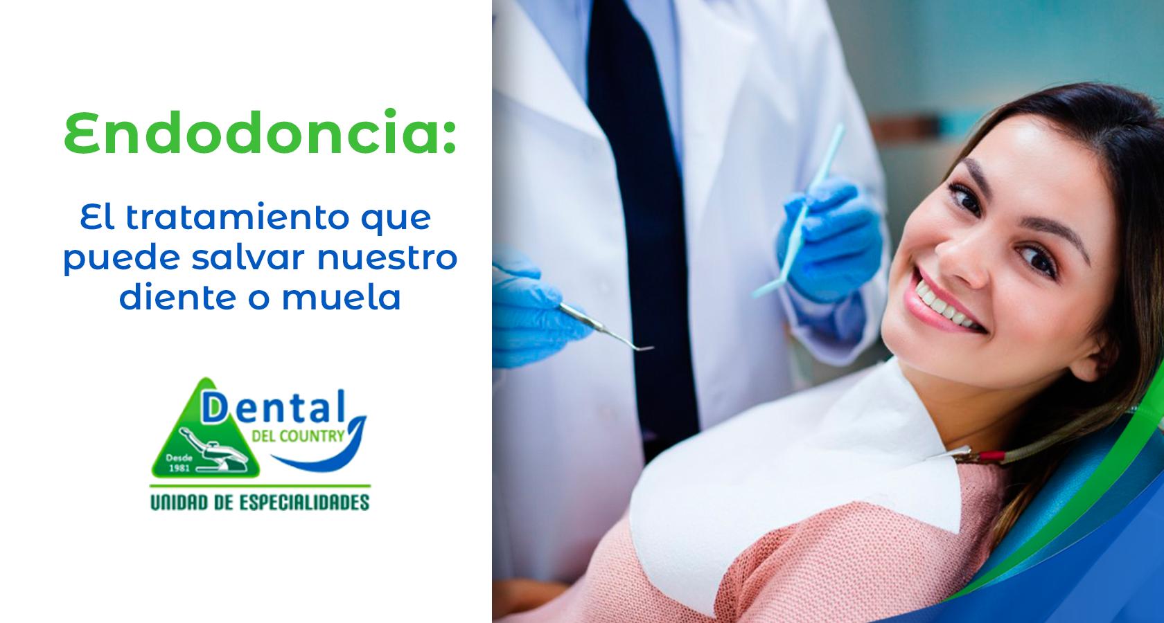 Endodoncia_Portada
